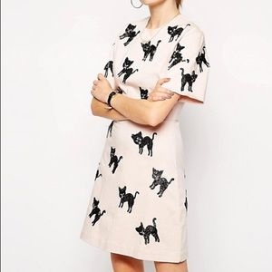 ISO ASOS Cat Dress size 6-10